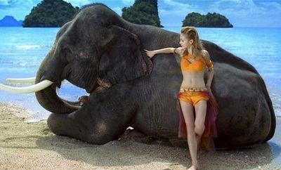 お前それわざとだろ!?と途中から突っ込みたくなる小象の水浴び