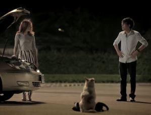 犬も歩けば一宿一飯の恩義を受ける!?タイのCMはトイレに行くには十分長いが・・・