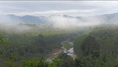 今夜のTBS「世界遺産」はタイのトゥンヤイ・ファイカケン野生生物保護区です